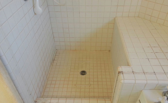 tile shower needs to be professionally cleaned