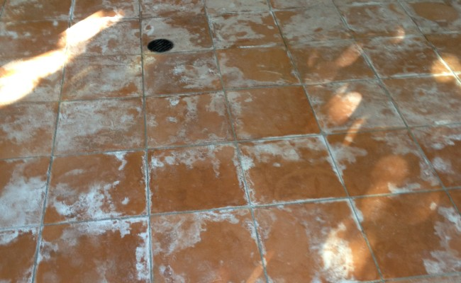 Terracotta Pavers Before
