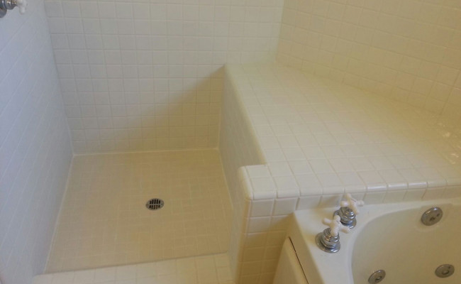 Tile Shower Professionally Cleaned
