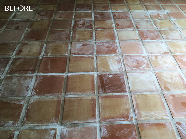 Efflorescence on Saltillo Tiles